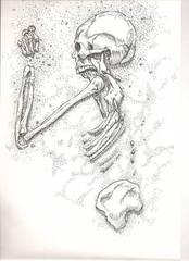 Misc-Desert%20Skeleton